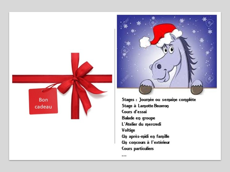 Bon cadeau Noël